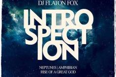 DJ Flaton Fox - Amphibian (Original Mix)