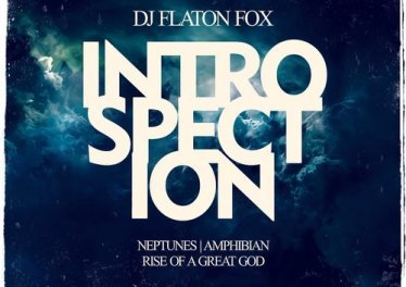 DJ Flaton Fox - Amphibian (Original Mix)