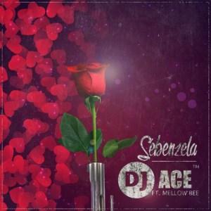 DJ Ace - Sebenzela
