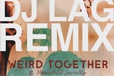 Weird Together - Down Low (DJ Lag Remix Extended) (feat. Moonchild Sanelly)