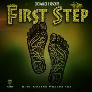 Buddynice - First Step