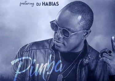 Zoca Zoca - Pimba (feat. Dj Habias)