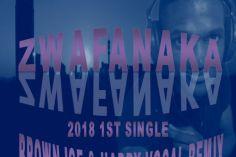Troika Musiq feat. Sizwe - Zwafanaka (Brown Ice & Harry Remix)