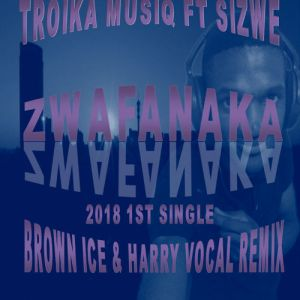 Troika Musiq feat. Sizwe - Zwafanaka (Brown Ice & Harry Remix)
