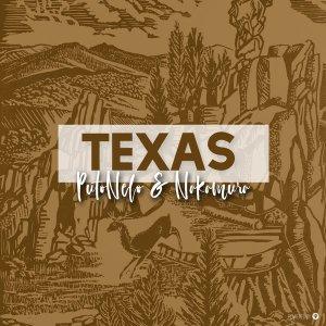 PutoNelo & NAKAMURA - Texas (Original Mix)