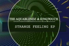 The AquaBlendz & KingTouch - Strange Feeling (Visionary Voyage). south african deep house, latest south african house, afro deep house, new house music 2018, best house music 2018
