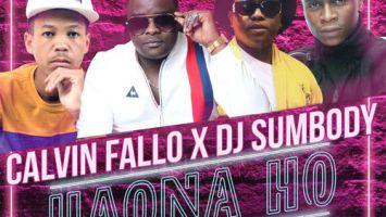 Calvin Fallo & DJ Sumbody - Haona Ho (feat. Liquid Metsi & Carpo)