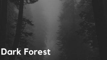 Warren Deep & Thexy LX - Dark Forest (feat. Jay Afro). New house music, deep house tracks, house music download, afro house music, afro deep house, tribal house music, best house music, african house music