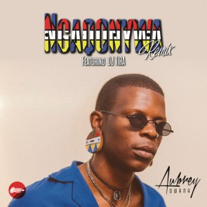 Aubrey Qwana feat. DJ Tira - Ngaqonywa (Remix), afro beat, afro house 2018 download south african