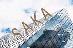 AudioGasmic SoundZ - Saka