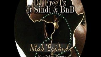 DJ FreeTz feat. Sindi & BnB - Ntab' Ezikude (PvnCakes Remix), new south african afro house music, tribal house music, afro deep house