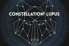 !Sooks & Secret Souls - Constellation Lupus EP, deep house, deep tech house music, tecno house, electronic house music 2018 download, south african deep house mp3