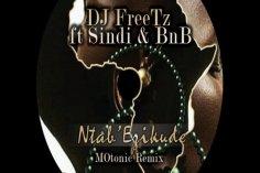 DJ FreeTz feat. Sindi & BnB - Ntab' Ezikude (MOtonic Remix)
