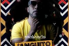 Dj Malvado feat. Robertinho & Vado Poster - Sanguito (Afro Mix)