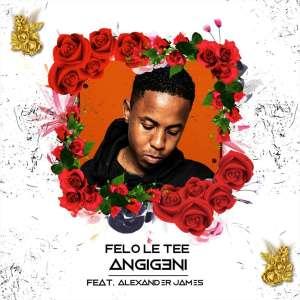 Felo Le Tee - Angigeni (feat. Alexander James)