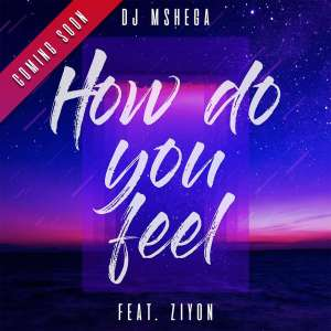 DJ Mshega - How Do You Feel (feat. Ziyon), new afro house music, afro house 2019, datafilehost house music, durban house music, south african house music, new house music south africa
