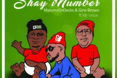 Malumz on Decks & Gino Brown Ft. Mr Vince - Shay'iNumber (DJ Jim MasterShine Remix), new afro house music, afro house 2019 download mp3