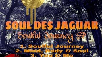 Soul Des Jaguar - Mind, Body & Soul (Original Mix)