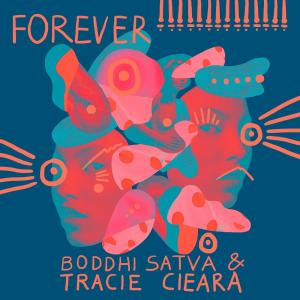 Boddhi Satva, Tracie Ciera - Forever (Instrumental) - Forever, new house music download, latest afro house, afrohouse songs