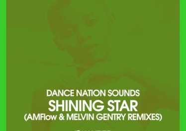Dance Nation Sounds, Zethe - Shining Star (Original Mix)