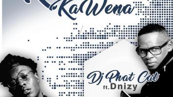 DJ Phat Cat - Kamina Kawena (feat. Dnizy)