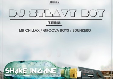 DJ Steavy Boy - Shake Ingane (feat. Mr. Chillax, Groova Boys & Sdunkero)