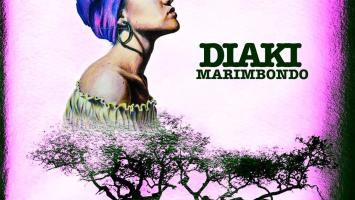 Diaki - Marimbondo (Original Mix)