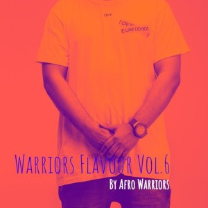 Afro Warriors - Warriors Flavour Vol.6 (Afro Tech)