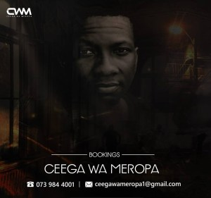 Ceega - Appreciation Mix VIII (60K Facebook Likes), soulful house, classic house music