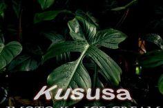 Kususa - Imoto Ka Ice Cream (TorQue MuziQ Remix)