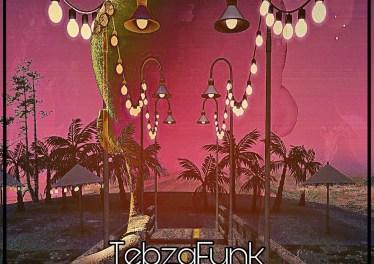 TebzaFunk - I Need Reality