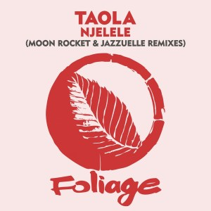 Taola - Njelele (Jazzuelle Darkside Mix), latest afro house music, afro house 2019, house music download, new afro house songs