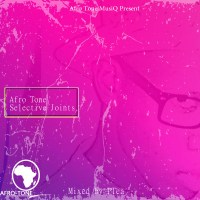 VA - Afro Tone Selective Joints, Vol. 2