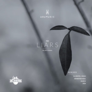 Udumusic, Hlayisani - The Liars (Demented Soul Imp5 Afro Mix)