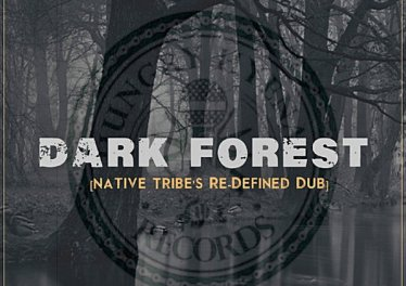 Warren Deep, Thexy LX & Jay Afro - Dark Forest (Native Tribe's Re-Defined Afro Remix)