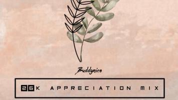 Buddynice - 26K Appreciation Mix (Redemial Sounds)