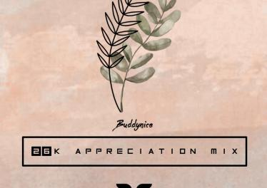 Buddynice - 26K Appreciation Mix (Redemial Sounds)