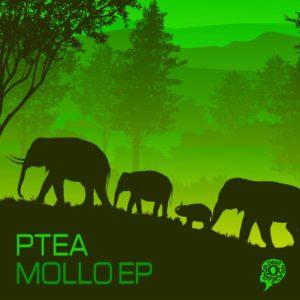 PTea - Mollo EP