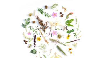 Tea White - Parallel Levels EP