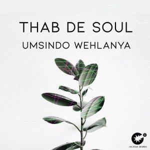 Thab De Soul - Umsindo Wehlanya
