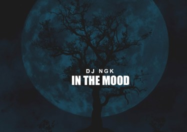 Dj NGK - Am In The Mood (AfroDrum Mix)