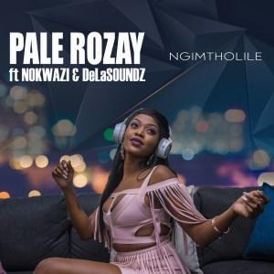 Pale Rozay - Ngimtholile (feat. Nokwazi & DeLASoundz)