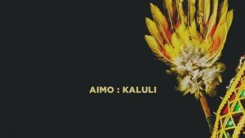 Aimo - Kaluli (Original Mix)