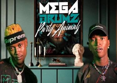 Megadrumz - Umcimbi Ongapheli (feat. Afro Brotherz)