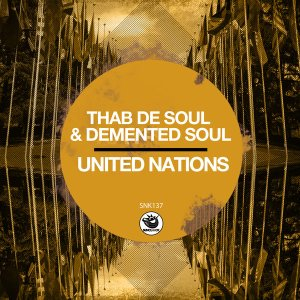 Thab De Soul & Demented Soul - United Nations (Original Mix)