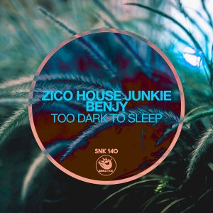 Zico House Junkie & Benjy - Too Dark To Sleep (Original Mix)