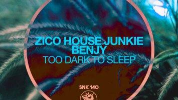 Zico House Junkie & Benjy - Too Dark To Sleep (Original Mix)