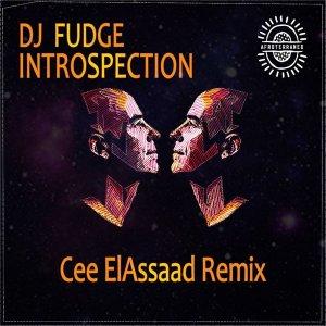 DJ Fudge - Introspection (Cee ElAssaad Introspective Remix)