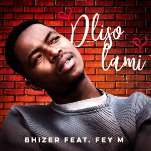 Bhizer - Dliso Lami (feat. Fey M)