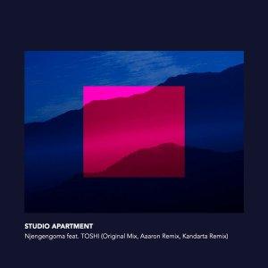 Studio Apartment - Njengengoma (feat. TOSHI)